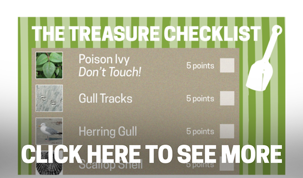 Avalon-Website-Treasure-Checklist-Preview-Graphic