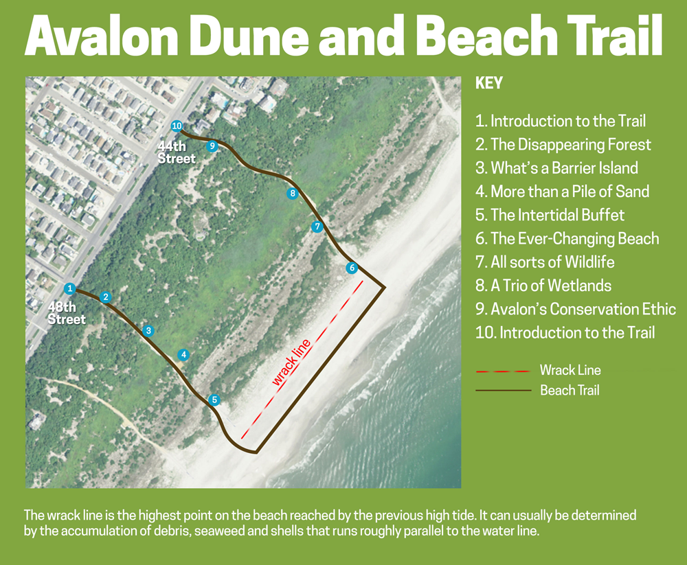 DandB-Trail-Map-Location-Page