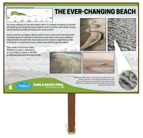 The-Ever-Changing-Beach-Sign